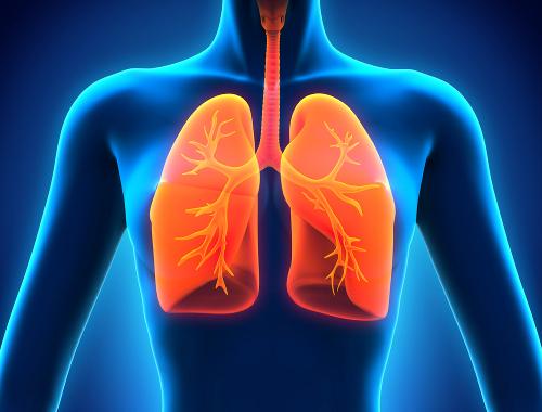 L'air intérieur et la santé