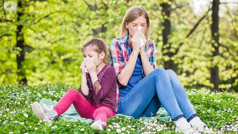 La pollution et le manque de microbes sont responsables d'une explosion des allergies